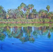San Ignacio Palms (Baja Landscapes # 17)